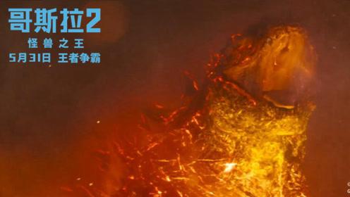 《哥斯拉2:怪兽之王》主创感谢观众!开启假期嗨爽模式