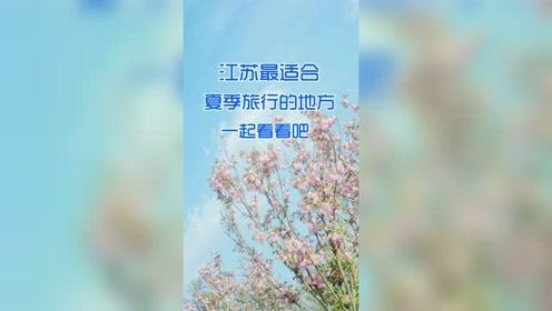 江苏最适合夏季旅游的地方一起来看看吧