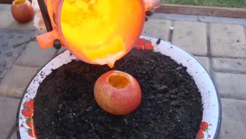 老外作死实验,将高温岩浆倒入苹果中,结果出乎意料!