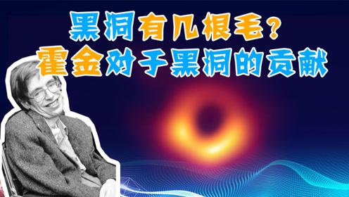 黑洞有几根毛?面积只增不减?霍金对于黑洞的贡献