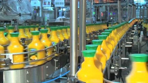 国外果汁生产全过程,真材实料纯原味,这样的果汁才真实!