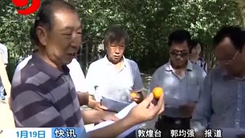 """酒泉:""""敦煌李广杏""""成功注册地理标志证明商标"""