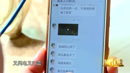 黄文秀——微信画面