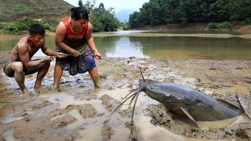 荒野求生:农村姐弟俩用原始方法抓到条罕见大泥鳅,这下子厉害了