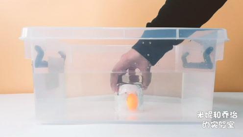 """科学小实验-""""杯子是空的""""这句话是谎言吗?"""