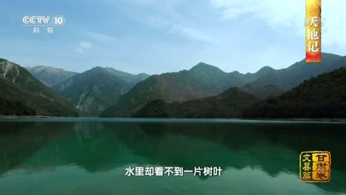 中国影像方志 文县天池被森林包围,水里为何看不到树叶?