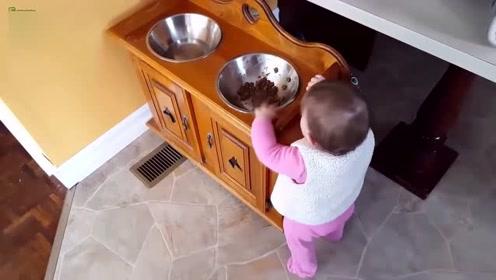 当妈的你还在拍,真把孩子当狗养啊,都吃狗粮了