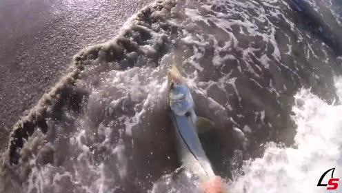 一对情侣在海边钓鱼,一人拿着一根鱼竿,厉害了!