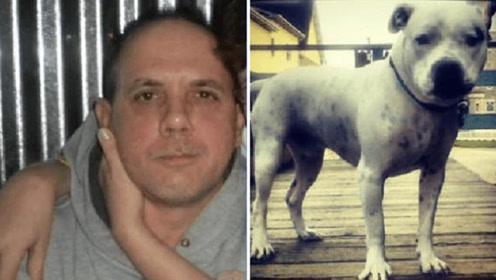 美国男子癫痫发作摔下床 竟被养了10年的斗牛犬咬死