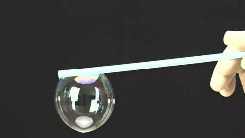 为啥你吹的泡泡总容易破?只因你少加了一样东西