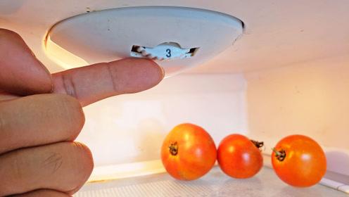 家里有冰箱的注意了,一定看看这里,不然让你一年多交几百元电费