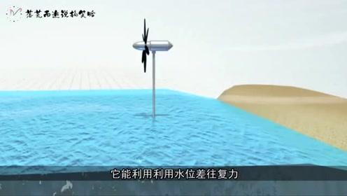 日本研发新型发电机,靠海浪推力,1%的海岸能抵十座核电站