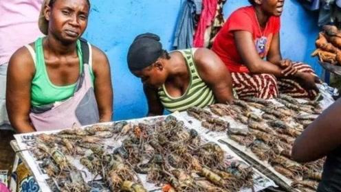 不少人因为饥饿而死,非洲人吃不饱饭?他们值不值得同情?