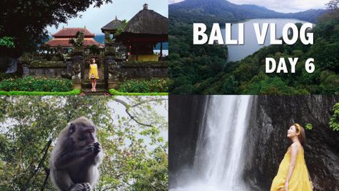 颖涵的VLOG——巴厘岛day6/水神庙/路遇猴子/小瀑布
