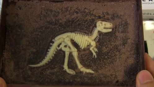 吃巧克力还能吃出恐龙骨架?日本糖果公司新创意,寓教于乐