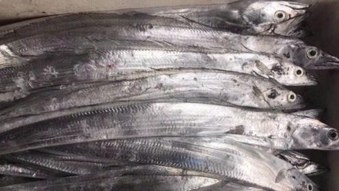 """世界最有骨气的鱼,被捕后立马""""爆炸"""",至今无人吃过新鲜的活鱼"""