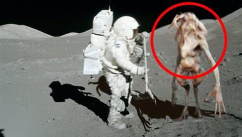 """杨利伟在太空听见""""外星人的敲门声""""是真是假?看完直冒冷汗"""