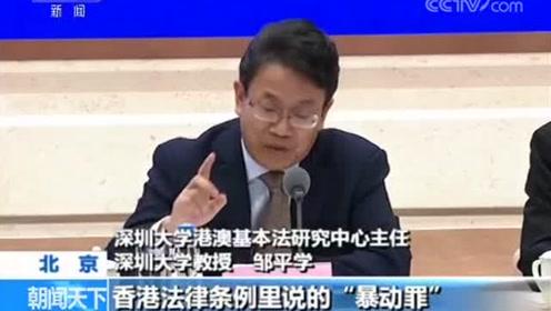 专家学者谈香港当前事态 暴力行为触犯香港多项法律