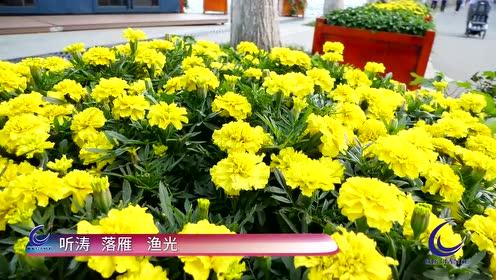 武汉东湖绿道——你知道的远远比想象中的要少