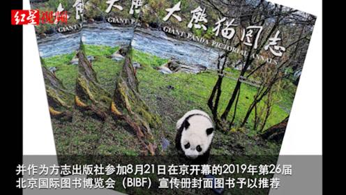 全球首部官修《大熊猫图志》正式出版 四川构建大熊猫内容作品集