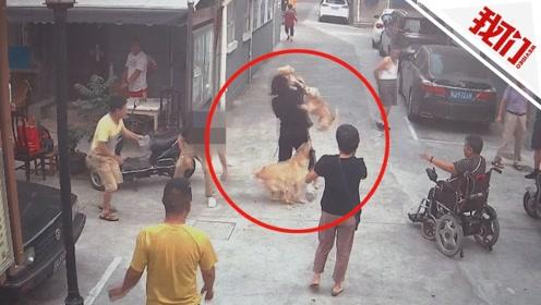 上海一家三口遭2条犬咬伤 警方:狗主人因故意纵狗咬人被刑拘