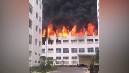 黑烟滚滚!贵州岑巩县一打火机厂发生火灾 致3死7伤