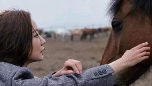 王珞丹登上杂志封面,策马奔腾潇洒自由!