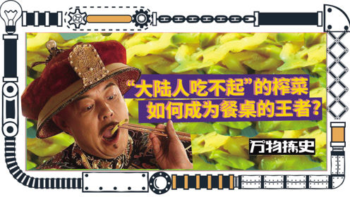 """""""大陆人吃不起""""的榨菜是如何成为餐桌王者的?"""