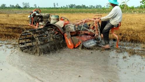 越南农民引以为傲的拖拉机,在稻田中畅行无阻,像一条小船