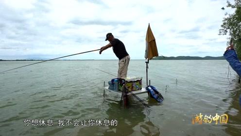 这是一条被人钓过的鱼,放流后居然舍不得走!