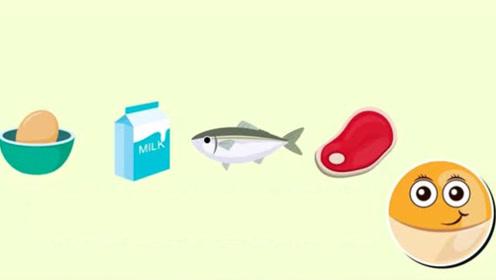 健康科普:基础营养素之蛋白质