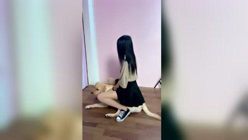 小姐姐真会玩,狗子当马骑!