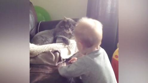 萌宝,你是怎么惹到猫咪了?感觉看见你都想打你!