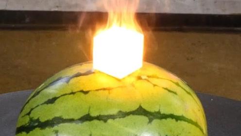 高温铁块放在西瓜上,西瓜会被烤熟吗?结果居然变成这样!