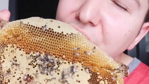 """外国小伙吃""""蜂巢""""!一口咬下去蜂蜜直流,你当蜜蜂是吃素的?"""