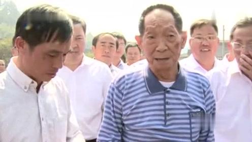 袁隆平透露:超级稻亩产或将破1200公斤