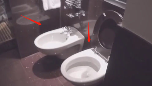 """为何欧洲酒店厕所里,都有两个""""马桶""""?出去游玩千万别坐错!"""