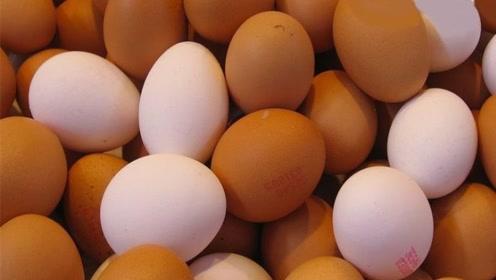 鸡蛋是红皮好还是白皮好?得知答案后,让人不敢相信!