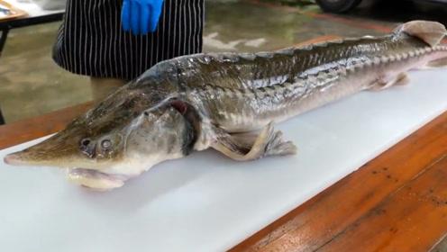 """小伙花重金买回来一条罕见""""鲟鱼"""",足足有18斤,烤着吃太过瘾"""