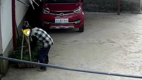 疑遭邻居举报,男子竟向邻居家牛草投毒