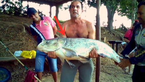 这么大的鲢鱼真的很少见,这回够男子吹一辈子的了!