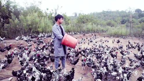 23岁小伙返乡养鸡,靠一个视频意外成网红,改变命运