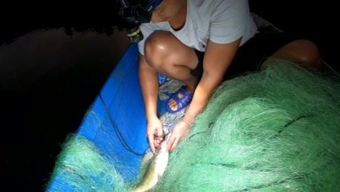 收到一斤多的黄骨鱼,不是你们说什么牛尾巴,大家看看是什么品种