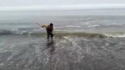 海边一个大浪打过来,网内瞬间灌满了鱼