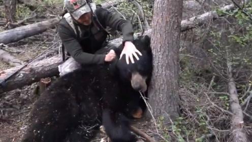 """最奇葩的狩猎方式,俄罗斯人举一根""""棍子"""",在树上守株待熊!"""