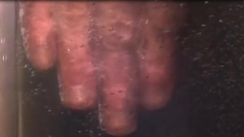 把手伸进液氮里会发生啥?看完感觉手心直出冷汗,网友:卧槽!