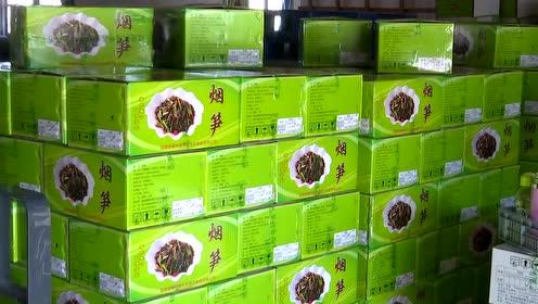 泰宁:发展笋竹产业 助力乡村振兴