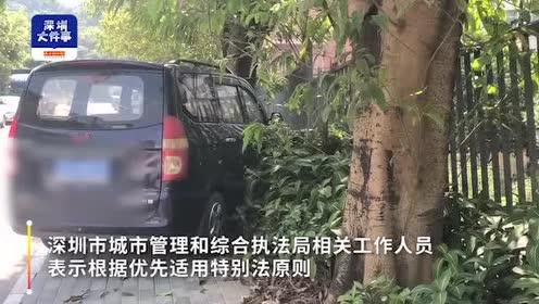 深圳绿地违停罚款频繁,记者走访多区,近七成市民称高额罚款不冤