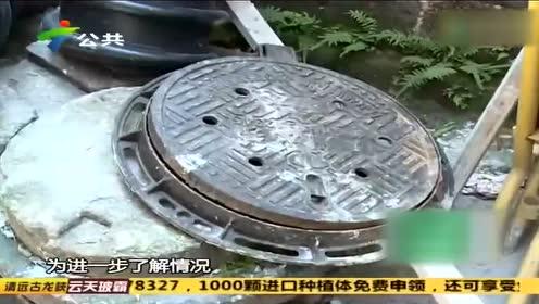 广州:雨水井滋生蚊虫 街坊担心影响健康