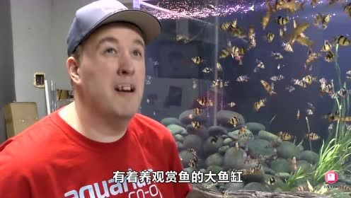 世界最小鱼缸,比指甲盖还小,小伙能找到合适的鱼吗?